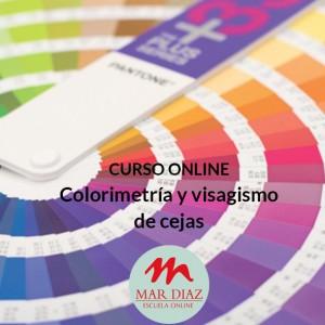 Curso Colorimetría Visagismo Cejas