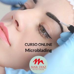 Curso Online Microblading Escuela Mar Díaz