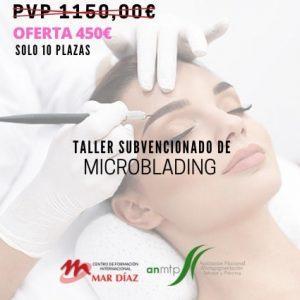 Taller subvencionado de microblading